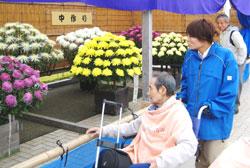天気に恵まれ・・・菊祭りを観て(11/4~10日) デイサービス編